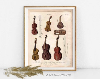 STRINGED MUSICAL INSTRUMENT Collage - digital download - printable 1800's music illustration - image transfer - totes, pillows, prints