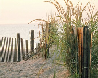 Coastal Dunes Photo, Beach, Home Decor,  Dawn, Beach Grass, Sand, Sea, Photography Print
