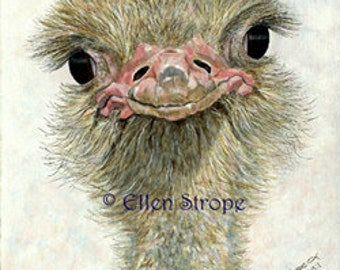 ACEO card, Giclee print, ostrich, bird art, bird ACEO, ACEO cards, ostrich decor, bird decor, Ellen Strope, prints