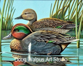 Green Winged-Teal Print, Waterfowl, Duck Print, Birds, Home Decor, Wall Art, Gifts, Duck Hunting Print, Acrylic, Painting, Office Decor