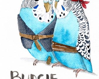 Budgie smugglers, card for dad, funny card, witty card, funny bird card, Australian souvenir, greeting card, blank card, card for him