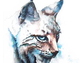 Lynx aquarelle