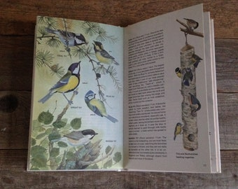 Bird Guide - Pocket Book - Watercolour Artist - Creative gift - Vintage Book - Hardback Book - Birdwatchers Gift