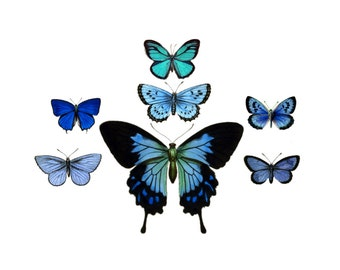 """Vintage Butterfly Temporary Tattoos - """"Fly & Flitter"""""""
