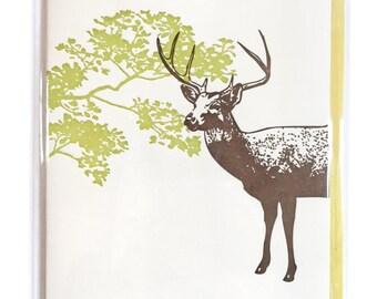 DEER card, Letterpress card, Holiday cards,  nature card, Blank Greeting Cards, blank letterpress card, woodland card, greeting cards