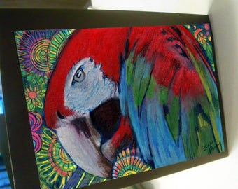 greeting card print of original art-  scarlet macaw parrot Zentangle