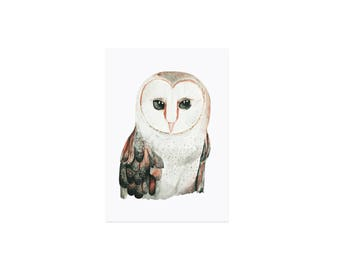 Postcard watercolor OWL