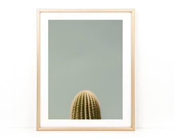 Saguaro Cactus, Cactus Photo, Desert Photography, Cactus, Saguaro Photograph
