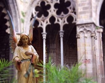 Barcelona Cathedral Angel photograph