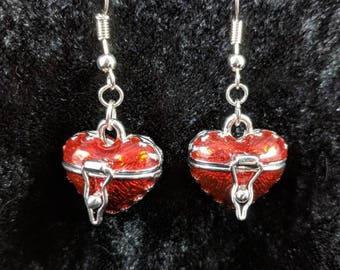 Heart locket earrings #92