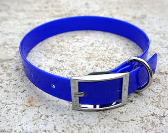 Royal Blue Biothane Buckle Dog Collar