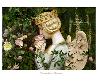 Flower Fairy  Print  Plaque The Last rose of Summer by Charlotte Bird