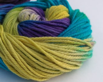 "Chunky Superwash Merino Yarn with Free Beanie Pattern - SQUEE handpainted colorway ""His High & Mighty Prince Tiddly-Push"""