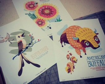 Set of 3 Oklahoma State Symbols (Bird, Mammal, Wildflower) Illustrated Prints: 8x10 Limited Edition
