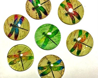 Dragonfly Magnets - Dragonflies - Set of 7 -Free U.S. Shipping -   1 Inch Domed Glass Circles - Gardener Gift, Grandma, Mom, Niece