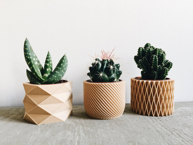pot plante exterieur design modulugreen pot pour plantes mural design intrieur extrieur vert. Black Bedroom Furniture Sets. Home Design Ideas