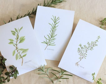 Watercolor Herb Set  Oregano Rosemary Thyme Watercolor Print Herb Print Kitchen Decor Gifts for Gardener Watercolor Print Set Botanical Set