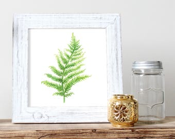 Fern Watercolor Print