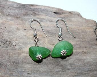 Green  Beach Glass Earrings - Sea Glass Earring - Pierced Sea Earrings - FREE Shipping inside the United States