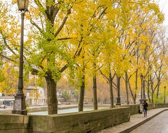 Fall in Paris photograph, fine art Paris photography, travel photo, golden autumn colors