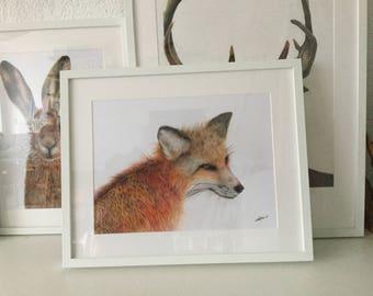 Fox Original Drawing