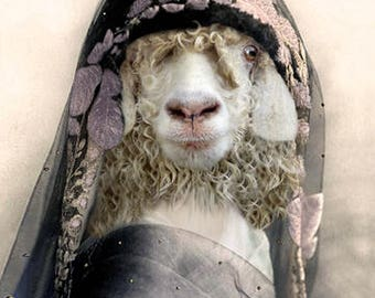 Queen of Sheepah, Animal in Clothes, Curly Sheep, Whimsical Art Farm Art, Anthropomorphic, Photo Collage, Funny Wall Art, Farmhouse Decor