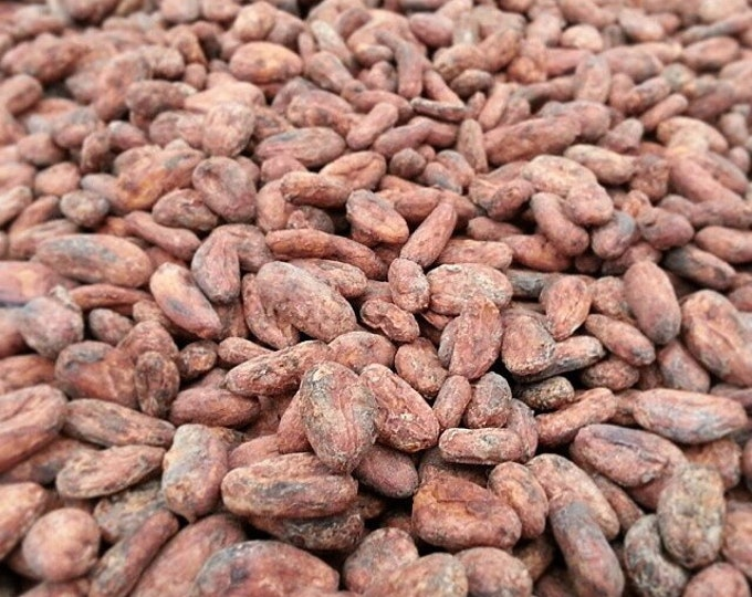 Whole Hawaiian Cacao Beans- 12oz