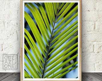 Palm leaf print, Tropical decor, Printable leaf wall art, Green leaf, Nature photography print #068