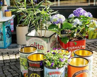 Flower Pot Kamil