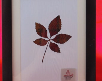 Harris Tweed Autumn Leaf Picture (free P&P)
