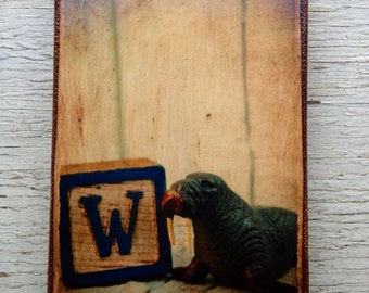 Vintage Toy  W is for Walrus  Art/Photo - Wall Art 4x6