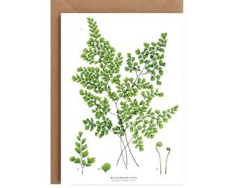 A6 Greeting Card - Maidenhair Fern