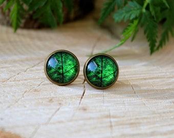 Green Leaf Stud Earrings   Leaf Earrings   Green Leaf Jewelry   Glass Dome Earrings   Green Earrings   Romantic Gift