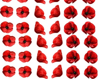 Poppy Heads - Ceramic Decals- Enamel Decal - Fusible Decal - Glass Fusing Decal ~ Waterslide Decal - 66888