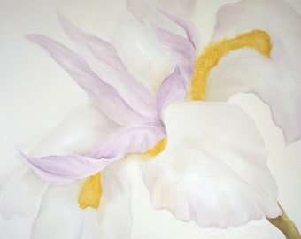 White Iris, Original Oil Painting by Lauren Kusar, Free Shipping