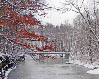 Over the River 4x6 Winter Landscape and Nature Snow Scene Photograph Cleveland Metroparks Red and White Art