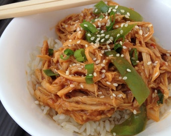 Slow cooker recipes etsy slow cooker sweet chili asian bbq chicken recipe pdf jpg asian inpsired crock forumfinder Images