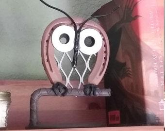 Magical Horseshoe Owl