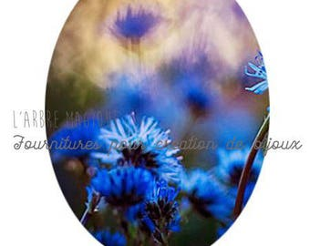 Fancy 18 x 25 mm flower cabochon blue flower dried mountain 1825c523