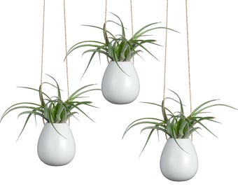 "Pack of 3 Oval Small Pots 2.5"" White Ceramic Planters Holders for Air Plants Wall Hanging Vase for Indoor Plants Flowers Ceramic Ornaments"