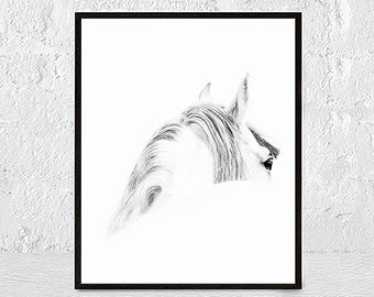 Horse Photography, Black and White Photo, Wall Art Print, Equestrian, Contemporary, Printable Large Poster, Digital Download