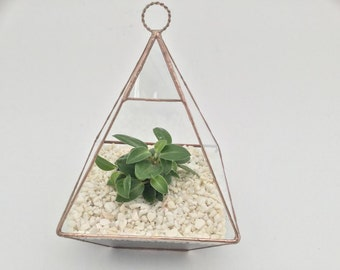 Glass terrarium planter pyramid shape handmade in the uk