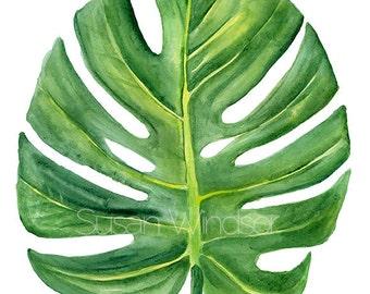 Monstera Leaf Watercolor Painting - 8 x 10 - Giclee Print - 8.5x11 Tropical Green Foliage Botanical Art Print