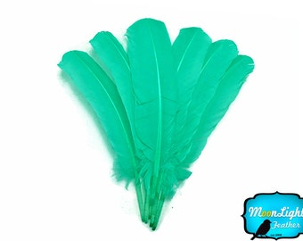 Ostrich Feathers, 1/4 lb - AQUA GREEN Turkey Rounds Secondary Wing Quill Wholesale Feathers (bulk) : 3705