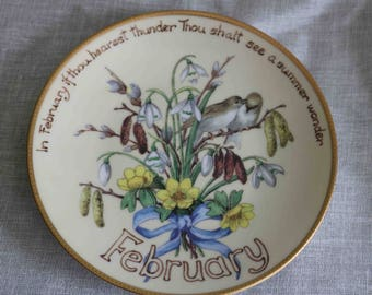 The Country Diary of an Edwardian Lady Limited Edition Plate  'February'  Bradex Davenport  Excellent condition