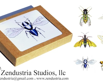 Stings & Wings Robotic Insect Card Boxed Set