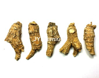 16oz / 1LB - PREMIUM AMERICAN Ginseng Root Extra Large, Hand Selected Grade A
