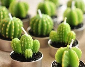 Candle Gift Set | Wedding Favor Idea | Wedding Guest Bridesmaid Friend Cactus Succulent Plant Candle Gift