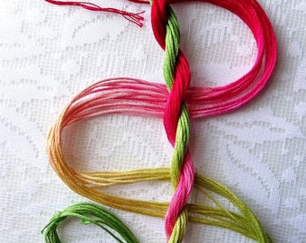 "Embroidery floss ""Rhubarb Pie"" hand dyed cotton"