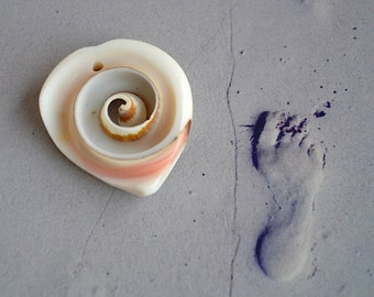 Shell Pendant with Swirl